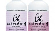 Mending Shampoo Bumble and Bumble