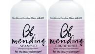 Mending Shampoo Bumble and Bumble