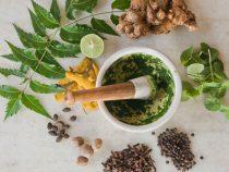 rośliny ajurwedy w kosmetykach